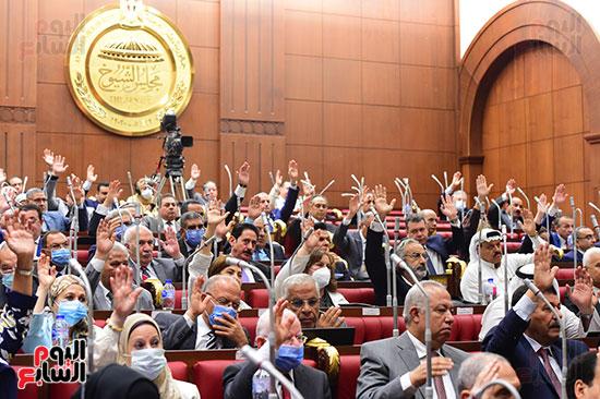 مجلس الشيوخ- (6)