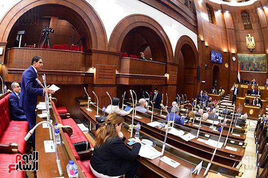 مجلس الشيوخ- (11)