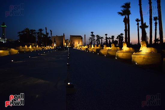 صورة-ليلية-لطريق-الكباش-وسحر-الحضارة-القديمة