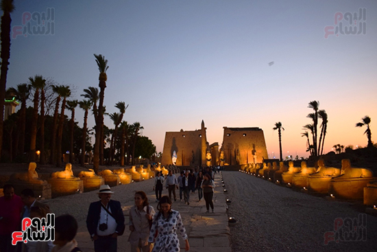 إحياء-طريق-الكباش-الفرعونى-ينتظر-نهاية-أزمة-كورونا-ليظهر-للنور-أمام-الأفواج-(1)