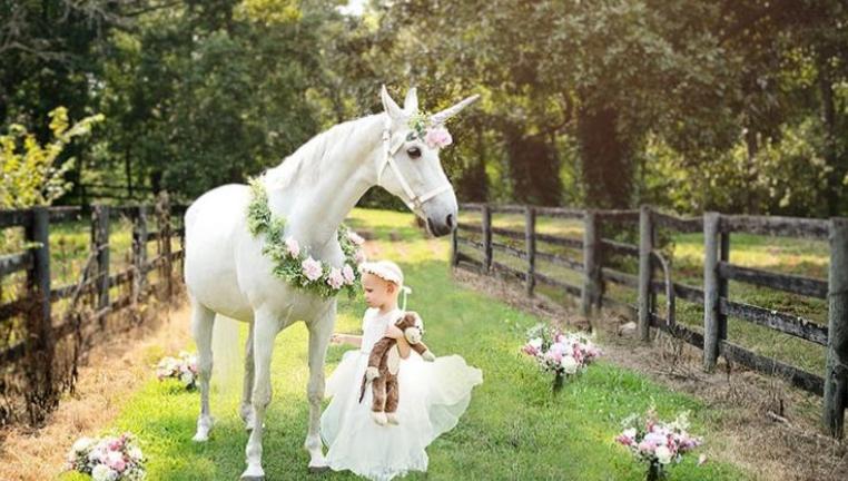 الطفلة أبيجسل والحصان