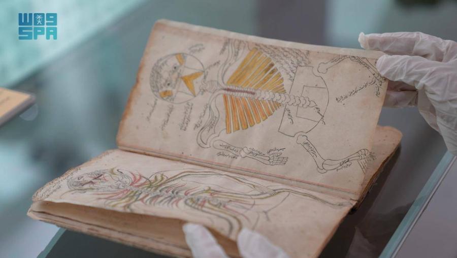 المخطوطة