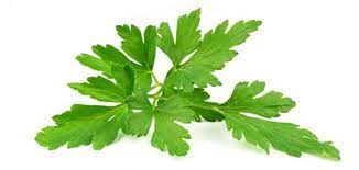 What are the benefits of parsley