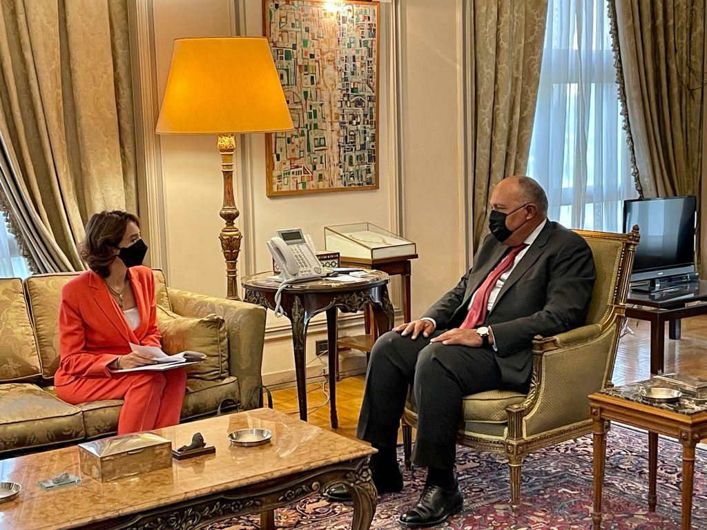 وزير الخارجية يستقبل الأميرة ريم على
