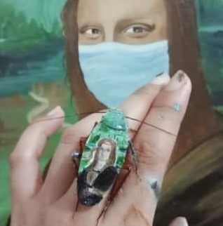 A painting on the back of a cockroach