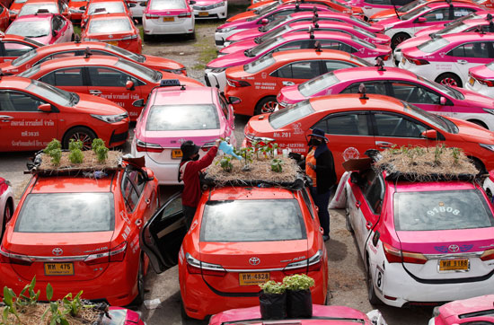 التدهور الاقتصادى سبب زراعة اسقف السيارات