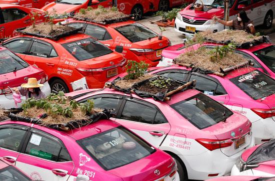 سيارات الأجرة المهجورة