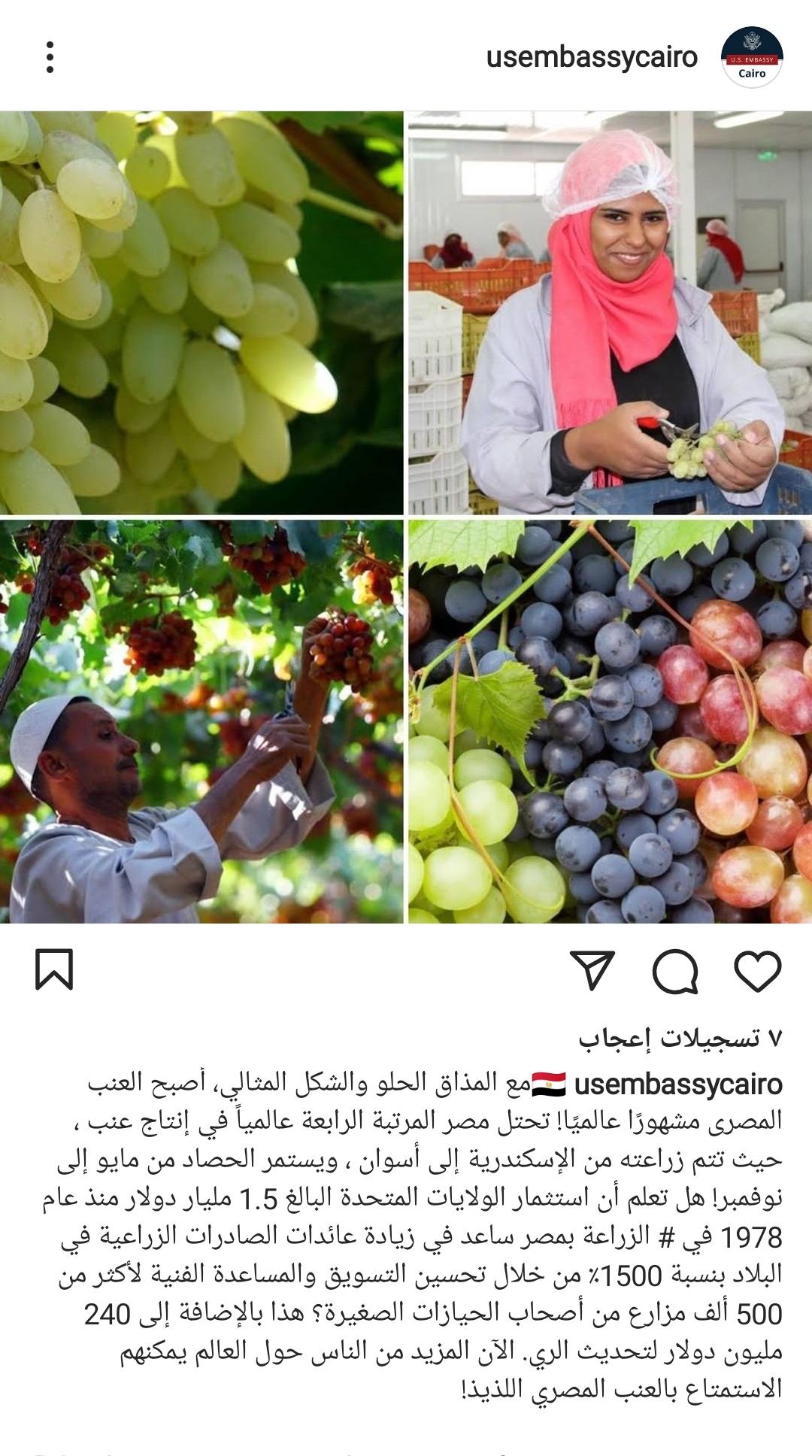 حساب السفارة المصرية بالقاهرة