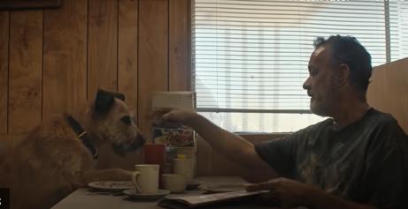 توم هانكس والكلب