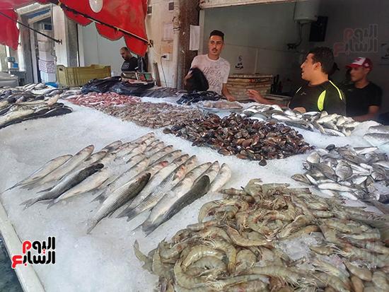 اشهر-سوق-للاسماك-فى-السويس