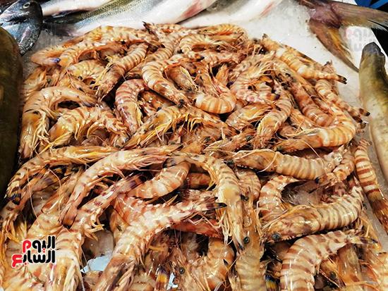اجود-انواع-الجمبرى-فى-سوق-السويس