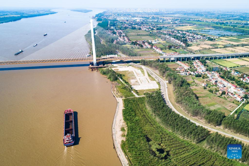صورة تظهر طول الجسر