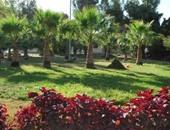 حديقة وزهور