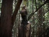 غابة الانتحار اليابان
