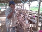 """""""أبو هنومة"""" خبرة 45 عاما فى صناعة الفخار"""