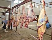 عملية تجهيز اللحوم بالمذبح