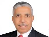 محمد الغباشى- مساعد رئيس حزب حماة الوطن