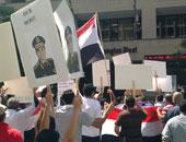مصريون في امريكا