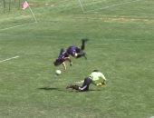 مهاجم يتلاعب بحارس المرمى ويسجل هدفًا