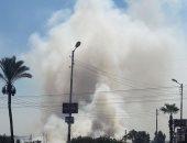 عمليات حرق قش الأرز على طريق جمصة السياحى