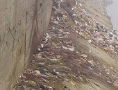 أهالى برقاش بالجيزة يشتكون من تراكم القمامة بالقرية