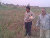 مواطن يطالب بإزالة التعديات على 50 فدان أراضى الدولة