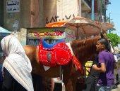 احتفال المواطنين بثانى أيام عيد الفطر بساحة مسجد المرسى أبو العباس