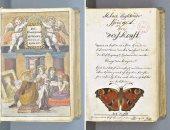 كتاب هولندى عن الألوان