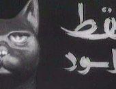 مسلسل القط الأسود