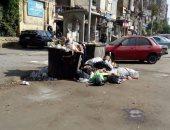القمامة فى جسر السويس