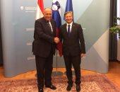 سامح شكرى ووزير خارجية سلوفينيا