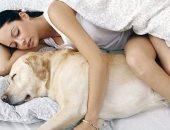 النوم مع الحيوانات الاليفة