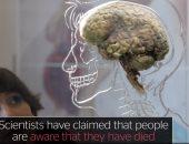 عقل الإنسان