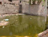 كارثة انتشار المياه الجوفية حول منازل اسنا