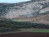 الهجوم التركى على عفرين