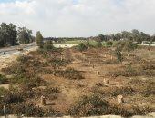 مياه جوفية بقرية أبوصوير