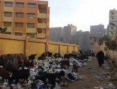 القمامة والأغنام أمام المدرسة