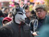 احتفالات عام الكلب فى الصين