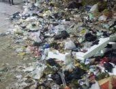 القمامة بعزبة النخل