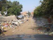 القمامة بشوارع القرية