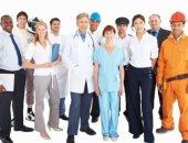 93.3% من المشتغلين بالدولة ملتزمون بساعات العمل الرسمية