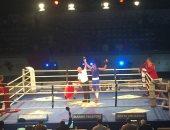 منافسات ملاكمة
