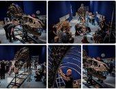 عرض هيكل ديناصور مكتمل فى متحف بفرنسا