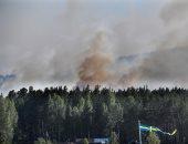 الدخان يتصاعد من حرائق الغابات