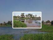 جانب من التعديات على حرم النيل فى بنى سويف