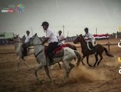 مهرجان الخيول