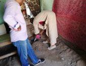 حملات القضاء على النمل الابيض بالاقصر