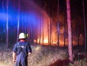 حرائق الغابات ارشيفية