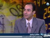 هشام إبراهيم أستاذ التمويل الدولي بجامعة القاهرة