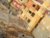 سطح مسجد يتحول لحظيرة مواشى